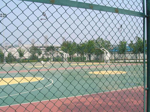 篮球场围网 (2)